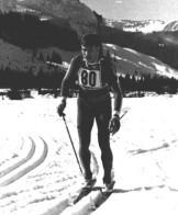 Heini Mehringer